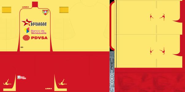 kit aragua 2013